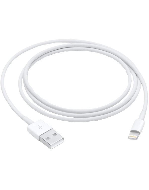 Lightning to USB Cable (1 m)